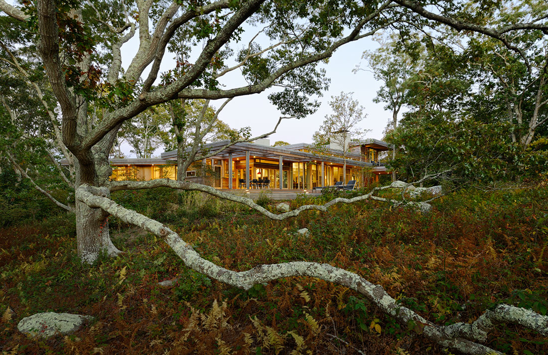 <p><a href='http://maryannthompson.com' title='http://maryannthompson.com' target='_blank'>Maryann Thompson Architects</a>